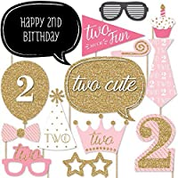 Two Much Fun - Girl - 2nd Birthday Party Photo Booth Props Kit - 20 Count [並行輸入品]