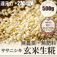 自然栽培玄米麹500g 味噌造り、甘酒作りには無農薬・無肥料の生麹 放射性物質検査済・ORP+235mV