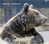Wildwood by MERZBOW
