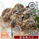 浦村牡蠣S~Mサイズ30個 殻付き牡蠣 三重県鳥羽産(加熱用)