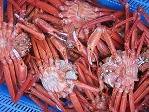 名人の浜茹で!! 紅ずわい蟹5kg(茹でたて)