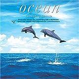 アイソトニック・サウンド Ocean〜オーシャン