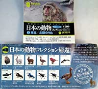 カプセルQミュージアム 日本の動物コレクション1 東北/北限のサル 全12種セット (シークレット入り)