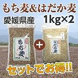【国産 麦】愛媛県特産「もち麦」1kg+ 「はだか麦」1kgセット