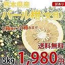 パール柑 文旦 送料無料 訳あり 5kg S~2Lサイズ混合 熊本県産 2箱購入で1箱おまけ 上品な甘みと香り グレープフルーツ みかん