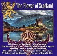 The Flower of Scotland