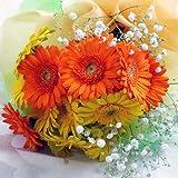 958【お祝い 誕生日 ギフト】【花束】ガーベラ15本花束・ビタミンカラー