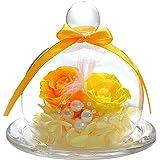ティートサイト プリザーブドフラワー フラワーアレンジ ラッピング済み ガラスポット入り 2輪 (バラ イエロー×オレン…