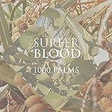 1000 Palms [歌詞対訳付・ボーナストラック収録 / 国内盤] (MGNF1022) 画像