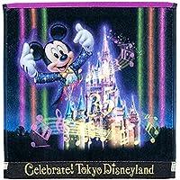 東京 ディズニー ランド Celebrate! Tokyo Disneyland ウォッシュ タオル ミッキー シンデレラ城 ハンド タオル ナイトタイム ナイトタイムスペクタキュラー セレブレイト東京ディズニーランド ランド限定