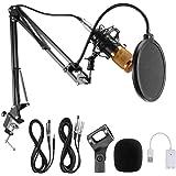 Condenser Microphone, Professional Studio Broadcasting Recording Mic with Adjustable Microphone Suspension Scissor Arm Stand