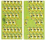 (プレーリードッグ) PRAIRIE DOG 立体4層構造マスク+抗菌マスクケース セット (まえならえ)
