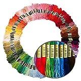 100束 x 100色 刺しゅう糸 初心者カラフル カラフル クロスステッチ 刺繍セット
