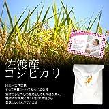 【出産内祝い】赤ちゃんの写真・オリジナルメッセージカード付き!内祝い米・佐渡産コシヒカリ 白米(精米) 20kg(10kg×2袋)