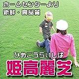 株式会社ハヤシ 芝生 品種:姫高麗芝 1平米