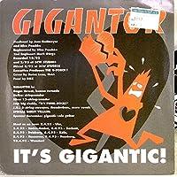 【EP】2005年 GIGANTOR 【GIGANTOR / YOUTH BRIGADE」【検:針飛び無】