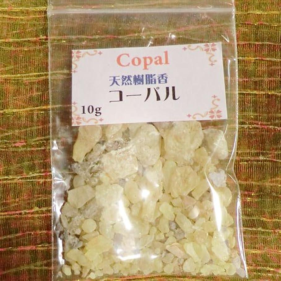 ポーズ盗賊累計コーパル COPAL (天然樹脂香) (コーパル, 10g)