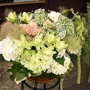 個性的なお花の種類をたっぷり使ったアレンジメントは、涼しげなリーフや色あいで素敵です。