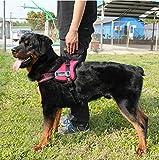 【福美康】 犬用 ソフト ハーネス 体に優しい 胴輪 ふかふか クッション 素材 愛犬 咳き込み 解消に (レッド, XL)