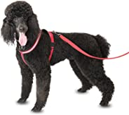 Company of Animals Comfy Harness for Dogs, Large, Red/Black/White