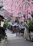 759スモールピース パズルの達人 枝垂桜と産寧坂-京都 (38x53cm)