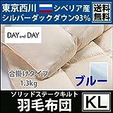 【東京西川】DAYandDAY~デイアンドデイ~ シベリア産シルバーダック93%羽毛合掛け布団(キングロング 230×210cm/1.3kg) DD4510 ブルー