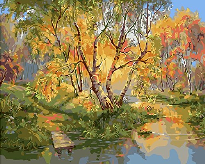 DIY 数字油絵 キャンバスの油絵 大人の子供のためのギフト 数字キットでペイント ホームデコレーション - 湖畔の木々 40* 50 cm
