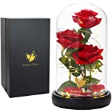 Beauty and The Beast Rose kit - Red Silk Rose and LED Lights in Glass Dome on Wood Base for Home Décor, Holiday, Party, Weddi