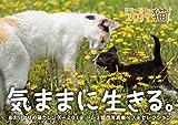 あおいとりの猫カレンダー2019 気ままに生きる。 (セイセイシャカレンダー2019)