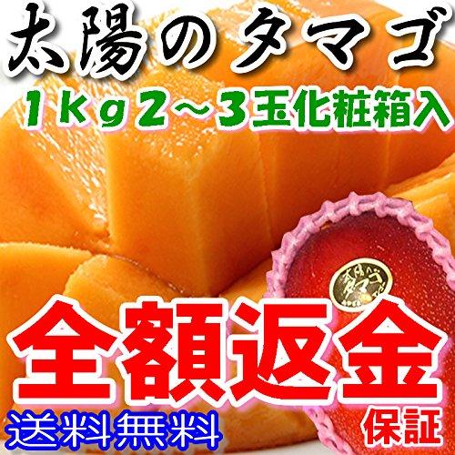 マンゴー 太陽のタマゴ 2L 〜 ...