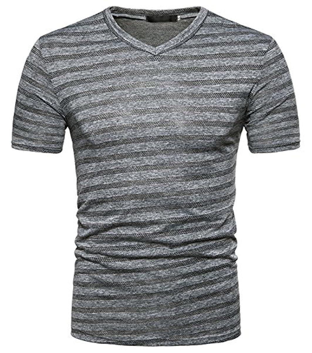 極めて重要な印象的ティッシュWhatlees(ワトリズ)メンズ Tシャツ 半袖 Vネック 薄手 速乾 カジュアル トップス