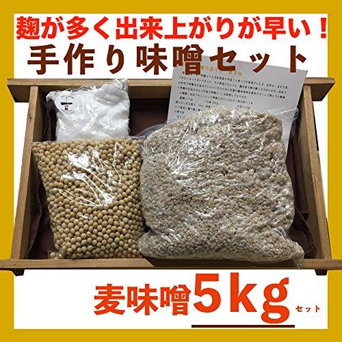 手作り味噌セット 麦味噌5kg(約5.4kg 無添加・九州産) 味噌作りセッ...