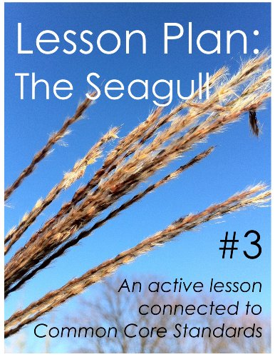 Lesson Plan #1: The Seagull