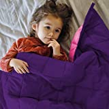 ZonLi Small Weighted Blanket 5 lbs(36''x48'', Pink/Purple), Cooling Weighted Blanket for Kids, Soft Material with Glass Beads