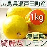 無農薬・無化学肥料 広島産 キレイなレモン 1kg
