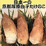 平成30年今が旬 日本一の朝掘りたけのこ筍2kg 京たけのこのトップブランド大枝塚原産