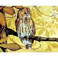 デジタル油絵,植物の黄葉や動物のフクロウ風景 Diy 絵画番号キットテーマデジタルペインティングキャンバスキット誕生日結婚式の宿泊先のクリスマスの装飾の装飾のギフトでは、 40 × 50 でペイント