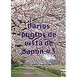 Varios puntos de vista de Japón #3 (Spanish Edition)