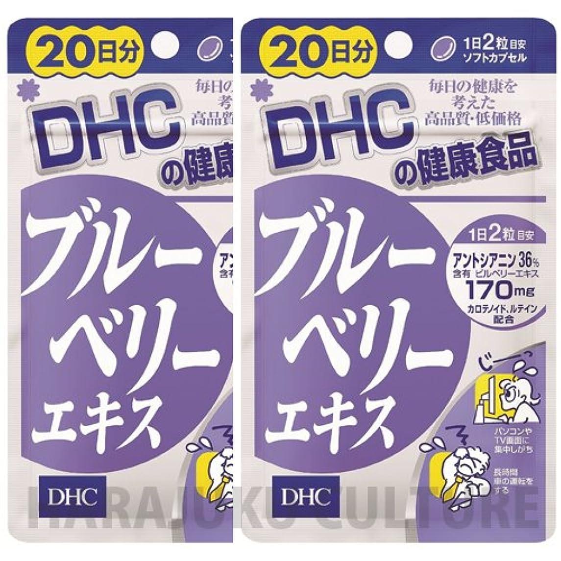 重要な失速にんじんDHC ダイエットパワー 20日分 60粒