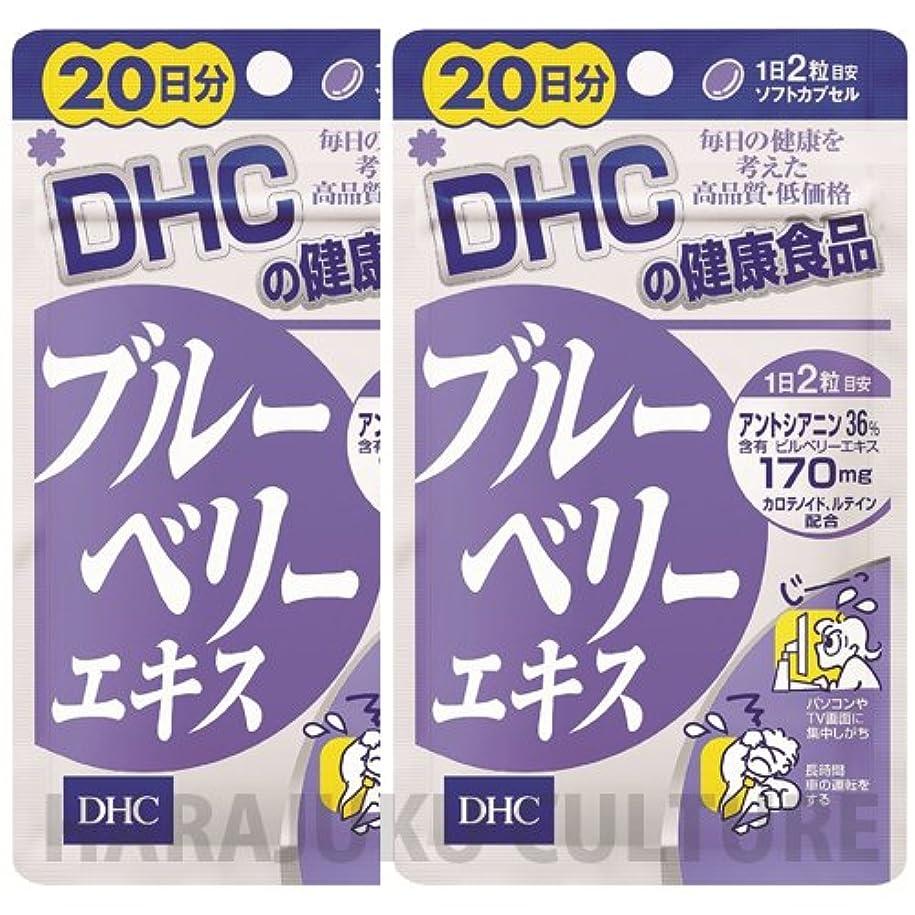 故国圧縮する緩やかなDHC ダイエットパワー 20日分 60粒