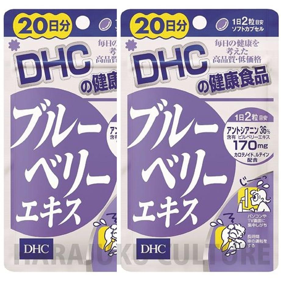 ルー資産稚魚DHC ダイエットパワー 20日分 60粒