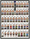 【2016年10月1日お別れ会・数量限定】千代の富士出世絵番付復刻版