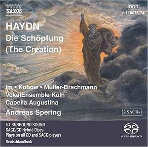 Creation (Hybr)