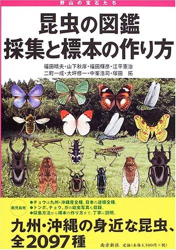 昆虫の図鑑採集と標本の作り方―野山の宝石たちの詳細を見る