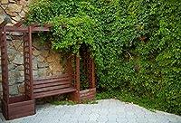 YeeleアウトドアBackdrops 5x 91センチ/1.5X 1M木製キャビネットシェルフグリーンプラントRock壁正方形タイル画像大人用芸術的肖像写真の撮影小道具写真撮影背景