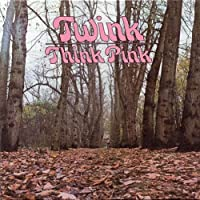 Think Pink by TWINK (2013-04-02)
