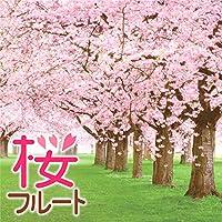 桜坂(福山雅治)