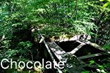Chocolate vol.4