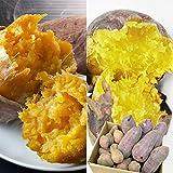 ほんまもん屋 安納芋 シルクスイート 食べ比べセット さつまいも 各2kg 合計 4kg