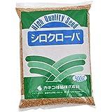 カネコ種苗 シロクローバ (シロツメクサ) 種子 500g